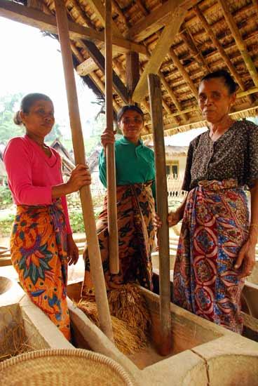 http://bekatulberasmerah.files.wordpress.com/2011/11/penumbuk-padi.jpg?w=570